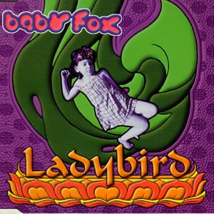Baby Fox – Ladybird