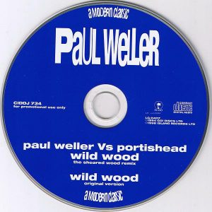 Paul Weller – Wild Wood