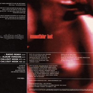 The Afghan Whigs – Somethin' Hot